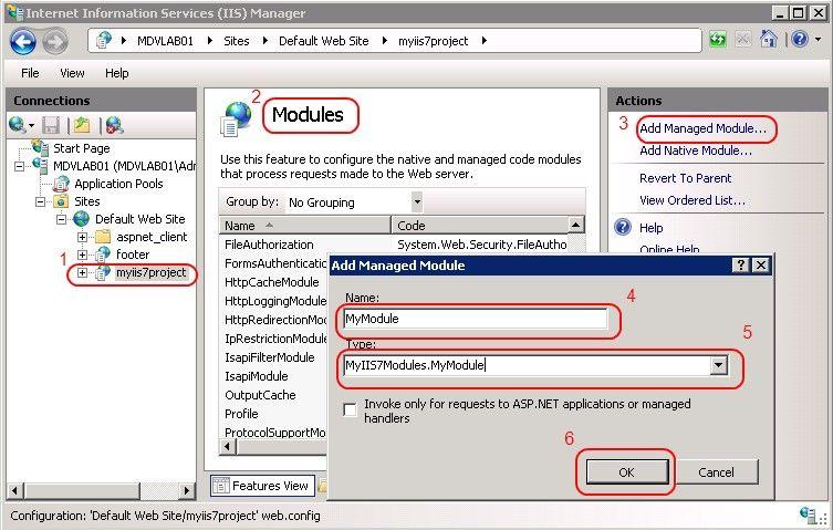 Adding an IIS7 module