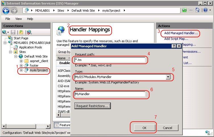 Adding an IIS7 handler